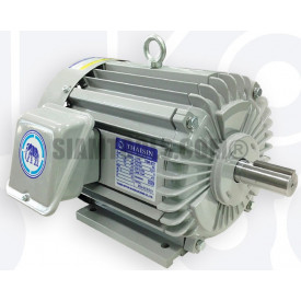 มอเตอร์ไฟฟ้า 3 สายตราช้างยนต์ TSM -1TF(IP55) ฮาร์ดแวร์