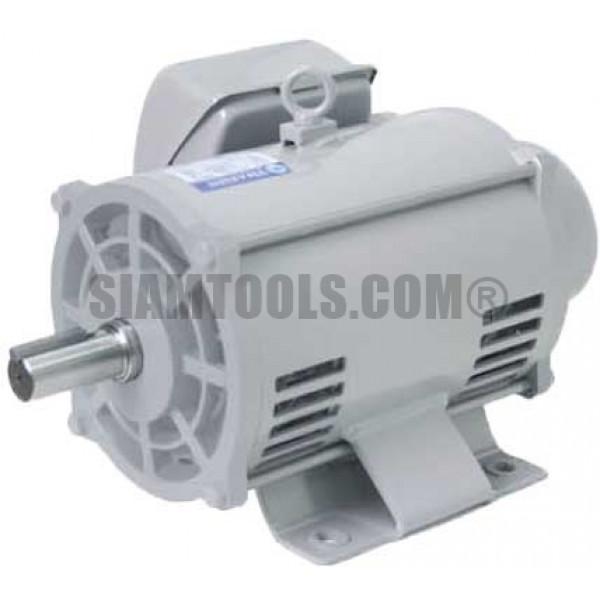 มอเตอร์ไฟฟ้าตราช้างยนต์ TSM-2 -2HP ฮาร์ดแวร์