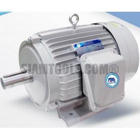 มอเตอร์ไฟฟ้า ตราช้างยนต์-TSM-5-(5HP) ฮาร์ดแวร์